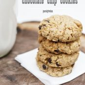 Cinnamon Soft Chocolate Chip Cookies (with coconut flour)