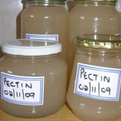 HOMEMADE APPLE PECTIN
