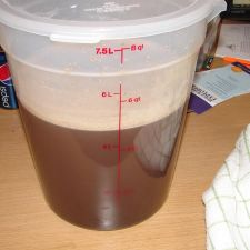 APPLE CIDER MOLASSES  HONEY CURE FOR  MAKING HAMS OR CANADIAN BACON