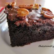 Coca Cola Cake using Box Cake Mix