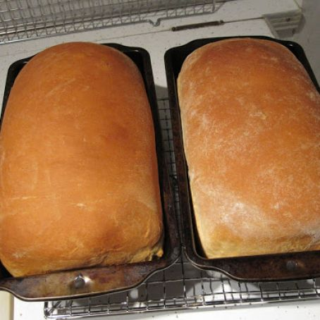 Homemade Bread Using Kitchen Aid Mixer Recipe - (8.8/8)