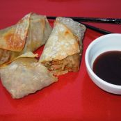 Asian Wonton Pork Rolls
