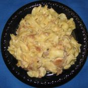 Chicken or turkey and creamy noodles