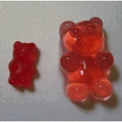 Adult Gummy Bears